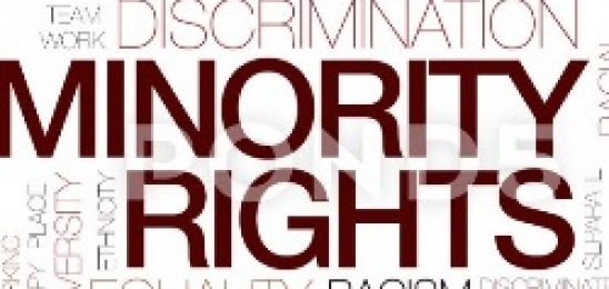 National Minorities' Rights: International and Domestic Dimensions. Briefing