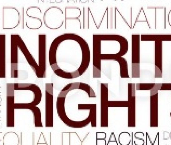 Міжнародно-правовий брифінг «Права національних меншин: міжнародно-правові стандарти і практика України»